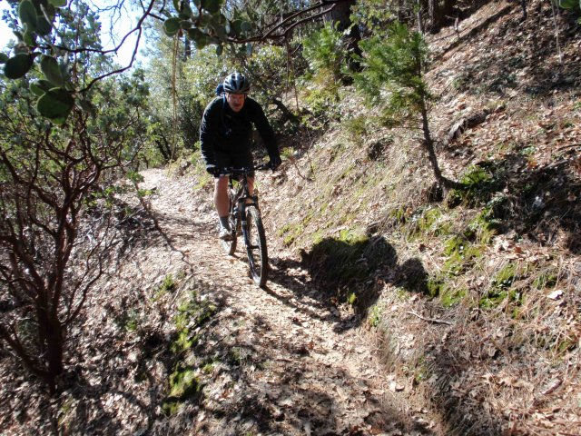 View of mountain biker on a trail